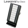 Cisco (Linksys) SPA500S